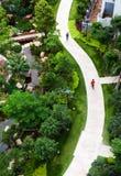 De baksteenweg van de kromme in tuin Royalty-vrije Stock Fotografie