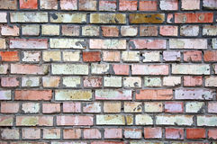 De bakstenen muur Stock Afbeelding