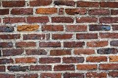 De bakstenen muur van Contrasty Stock Afbeeldingen