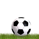 De bal die van het voetbal in het gras legt Royalty-vrije Stock Foto