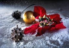 De bal en de poinsettia van Kerstmis Stock Foto's