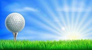 De bal en het T-stuk van de golfcursus Stock Afbeelding