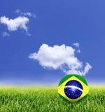 De Bal van Brazilië in Gras Stock Afbeelding