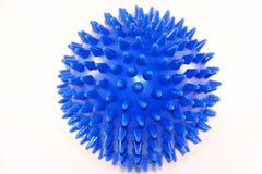 De bal van de egel Stock Fotografie