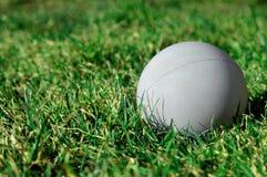 De Bal van de lacrosse stock afbeelding