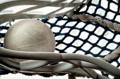 De bal van de lacrosse in hoofd Stock Foto's