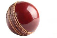 De bal van de veenmol. Royalty-vrije Stock Fotografie