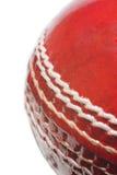 De bal van de veenmol Royalty-vrije Stock Afbeeldingen