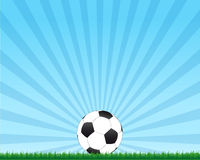 De bal van de voetbal op gras Stock Foto's