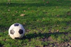 De bal van de voetbal op het gras Stock Foto