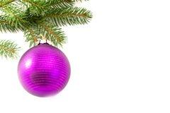 De bal van het glas het hangen op de boom Stock Foto