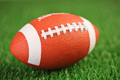 De bal van het rugby op een gras royalty-vrije stock fotografie