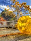 De bal van het strand royalty-vrije stock foto's