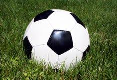 De bal van het voetbal in gras Stock Foto