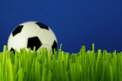 De bal van het voetbal in gras Stock Foto's