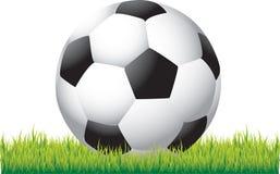 De bal van het voetbal op gras Vector Illustratie