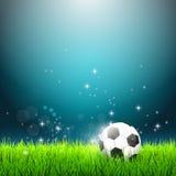 De bal van het voetbal op groen gras Stock Foto