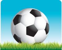De bal van het voetbal op het gras Stock Illustratie