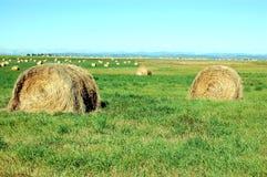 De balen van het hooi in de prairies Royalty-vrije Stock Foto