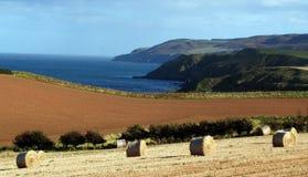 De balen van het hooi op kustlijn Royalty-vrije Stock Foto