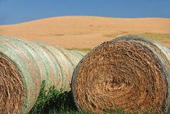 De Balen van het hooi op Landbouwgrond Royalty-vrije Stock Afbeeldingen