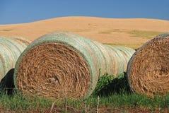 De Balen van het hooi op Landbouwgrond Stock Foto