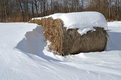 De balen van het stro in de winter Royalty-vrije Stock Fotografie