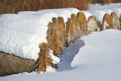 De balen van het stro in de winter Royalty-vrije Stock Afbeeldingen