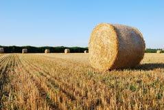 De balen van het stro op landbouwgrond Royalty-vrije Stock Foto's