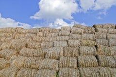 De balen van hooibergen in platteland Stock Foto's