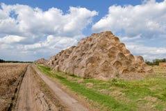 De balen van hooibergen in platteland Stock Fotografie