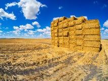 De balen van stro stapelden zich omhoog na oogst op royalty-vrije stock foto