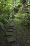 De Balinese Weg van de Tuin Royalty-vrije Stock Afbeeldingen