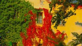 De balkons van de oude mooie woning zijn behandeld in rode bloemen - Beeld stock afbeeldingen