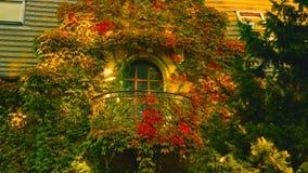 De balkons van de oude mooie woning zijn behandeld in rode bloemen - Beeld stock fotografie