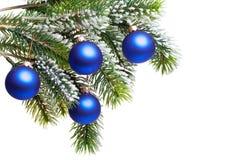 De ballen van het nieuwjaar s op een snow-covered tak Royalty-vrije Stock Fotografie