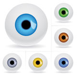De ballen van het oog. vector illustratie