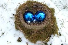 De ballen van Kerstmis in nest Royalty-vrije Stock Foto's