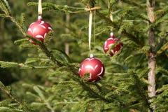 De ballen van Kerstmis op een spar stock afbeeldingen