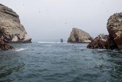 De Ballestas öarna - Pisco - Peru Arkivbilder