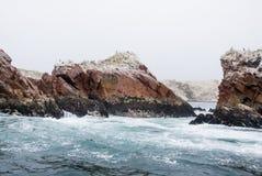 De Ballestas öarna - Pisco - Peru Royaltyfria Bilder