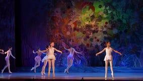 De balletparels tonen stock video
