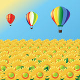 De ballons van de lucht met zonnebloemen Stock Fotografie