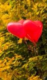 De ballons van het liefdehart, in openlucht Stock Afbeeldingen