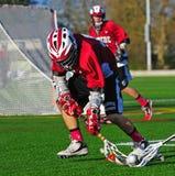 De baloogst van de lacrosse stock afbeeldingen