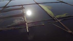 De de bamboehut en structuur voor lokale aquicultuur wordt gebouwd verstrekken levensonderhoud voor kleine landelijke landbouwgem stock video