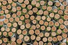 De bamboetextuur Stock Foto