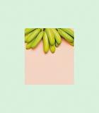 De bananen van de manierfoto op roze achtergrond Minimale Geometrische styl Royalty-vrije Stock Afbeeldingen