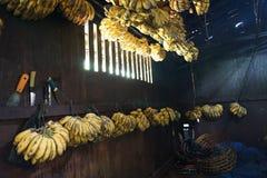 De bananen voor gebraden bananen worden verkocht in restaurants royalty-vrije stock foto