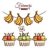De Bananengroenten van de landbouwersmarkt Royalty-vrije Stock Foto